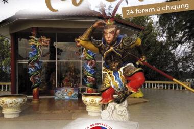Úvodní kurz Taichi (Tajči) 24 forem a qi-kung od 7.4. do 30.6.